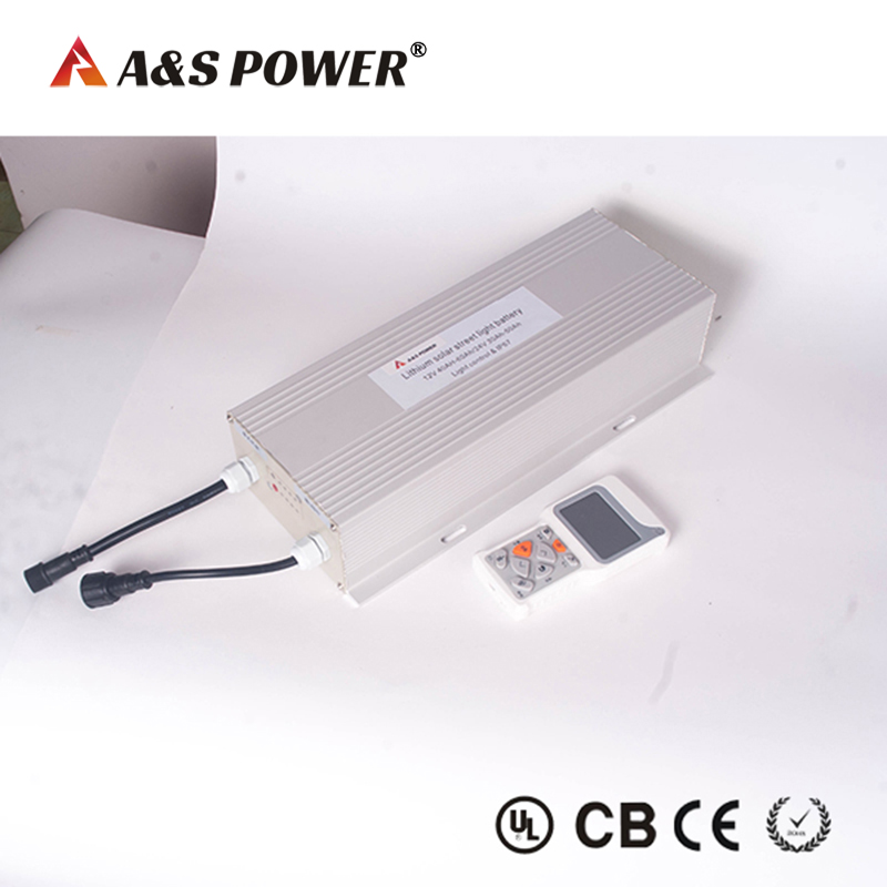 24V 30Ah  Lithium Battery With Controller